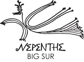 Sales Associate (Nepenthe)